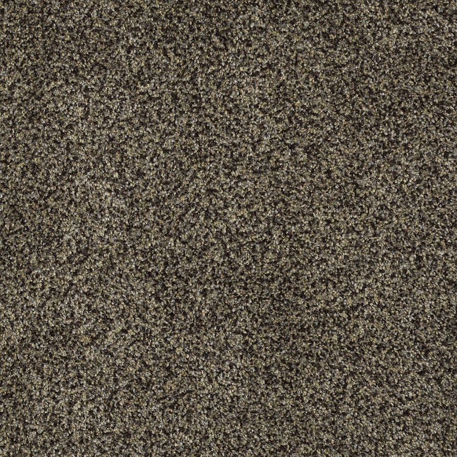 STAINMASTER TruSoft Private Oasis IV Star Beach Textured Indoor Carpet