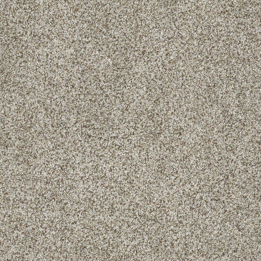 STAINMASTER TruSoft Private Oasis IV Key West Textured Indoor Carpet