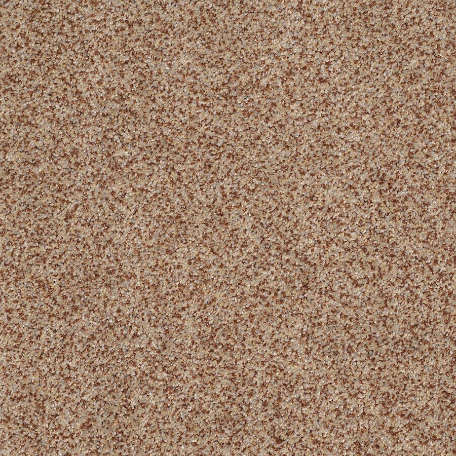 STAINMASTER TruSoft Private Oasis IV Florence Textured Indoor Carpet