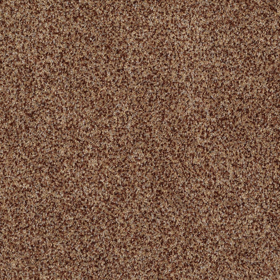 STAINMASTER TruSoft Private Oasis IV Montana Textured Indoor Carpet