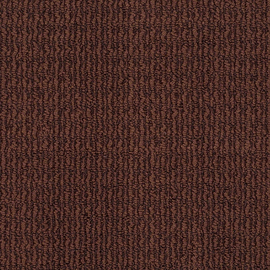 Shop stainmaster trusoft uneqivocal fine wine berber for Stainmaster carpet