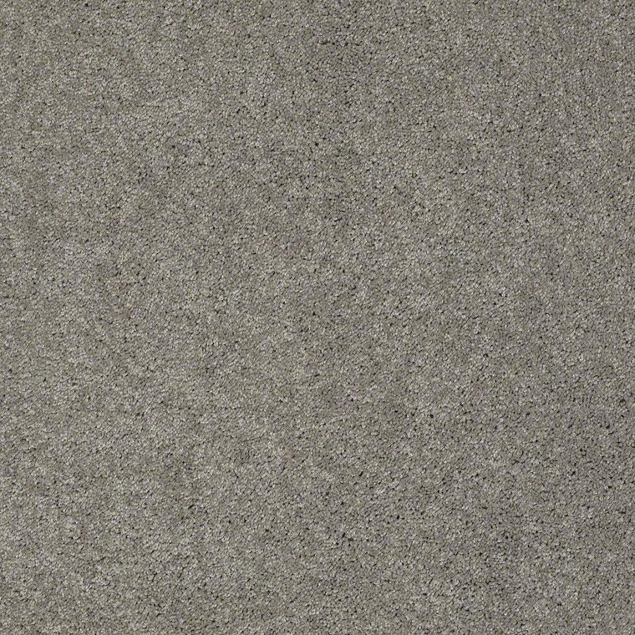 STAINMASTER Active Family Supreme Delight Heavy Metal Textured Indoor Carpet