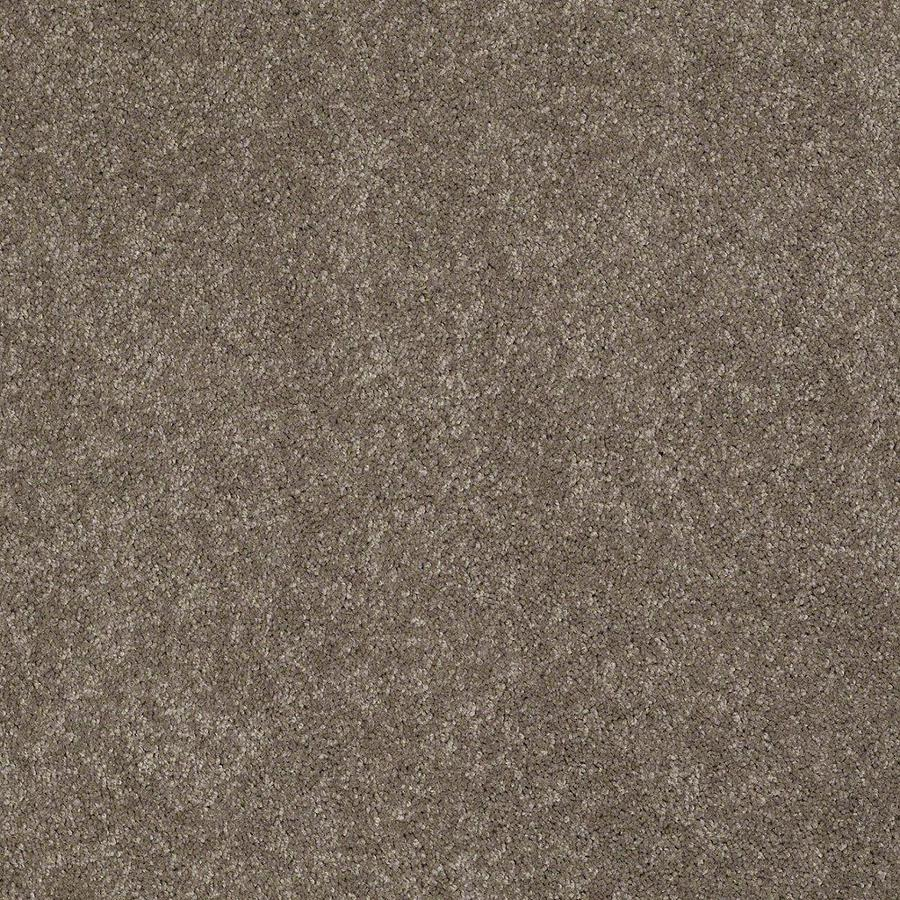 STAINMASTER Active Family Supreme Delight Misty Taupe Textured Indoor Carpet