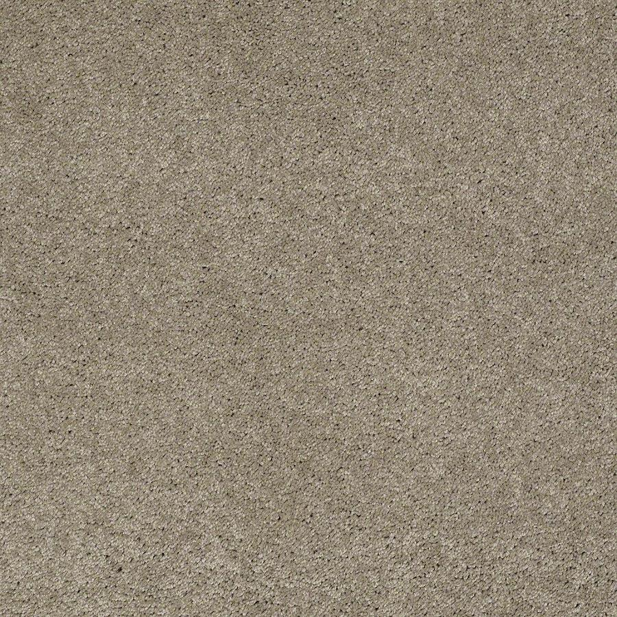 STAINMASTER Active Family Supreme Delight Driftwood Textured Indoor Carpet