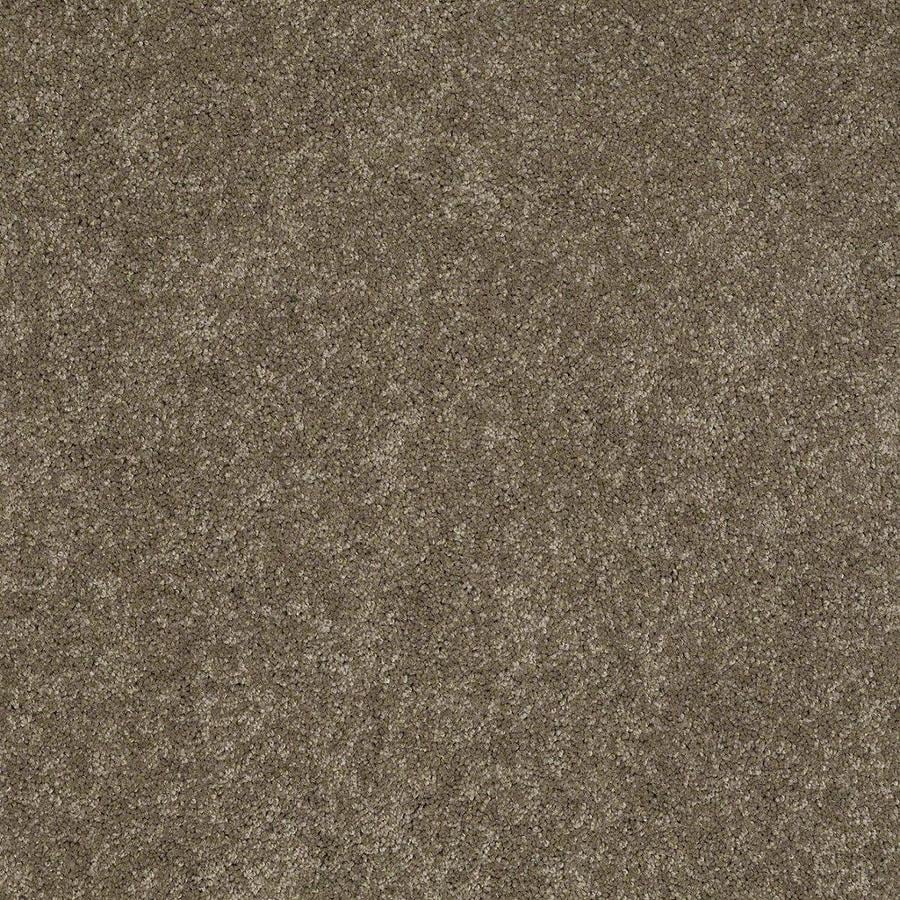 STAINMASTER Active Family Supreme Delight Boardwalk Textured Indoor Carpet