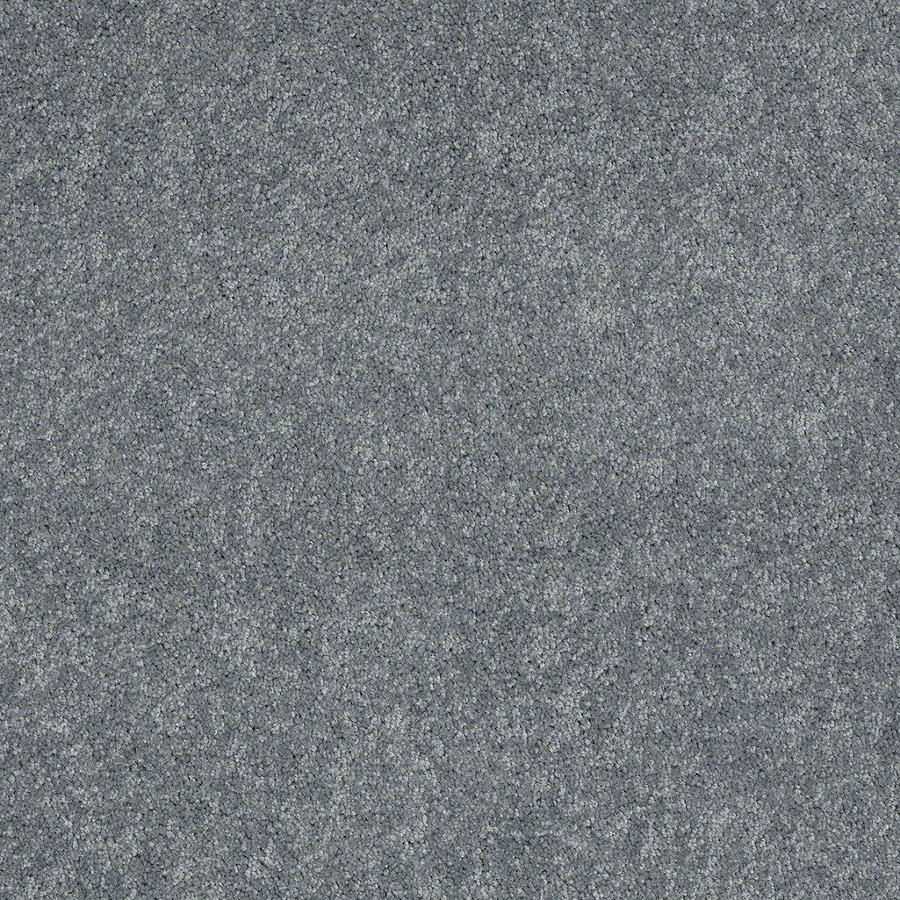 STAINMASTER Active Family Supreme Delight Evening Surf Textured Indoor Carpet