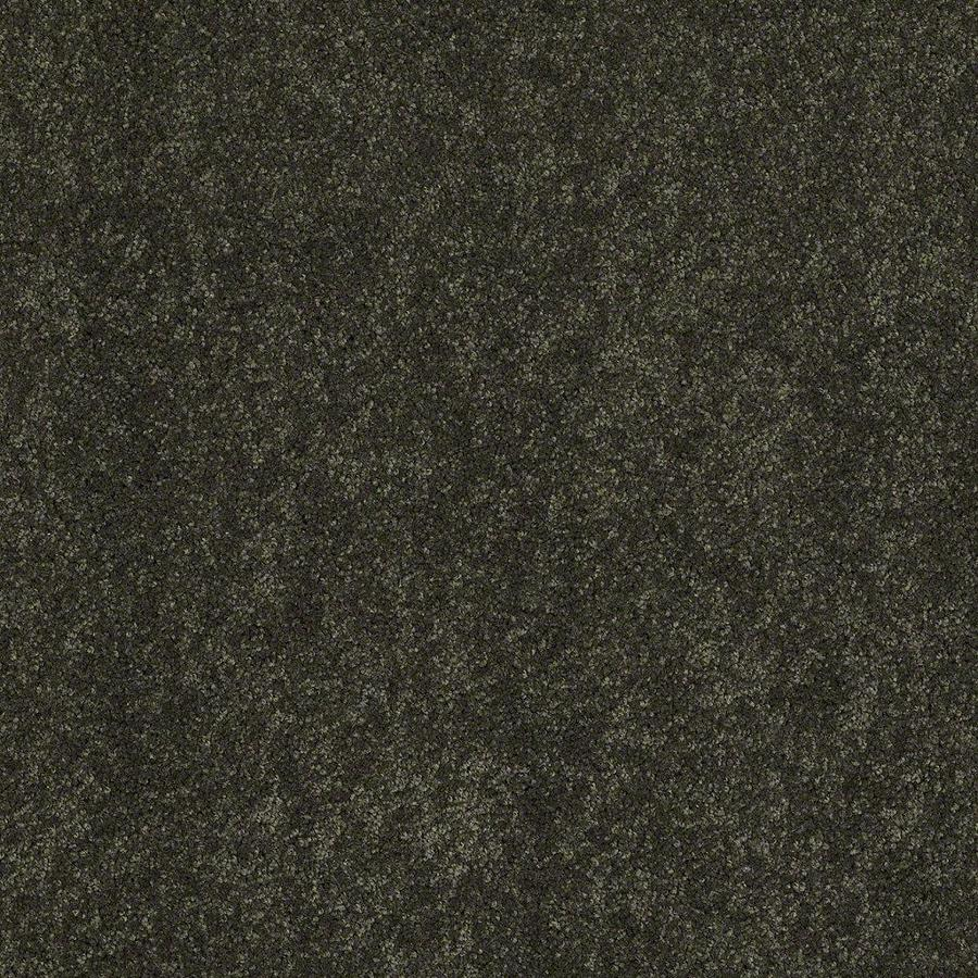 STAINMASTER Active Family Supreme Delight Parsley Textured Indoor Carpet