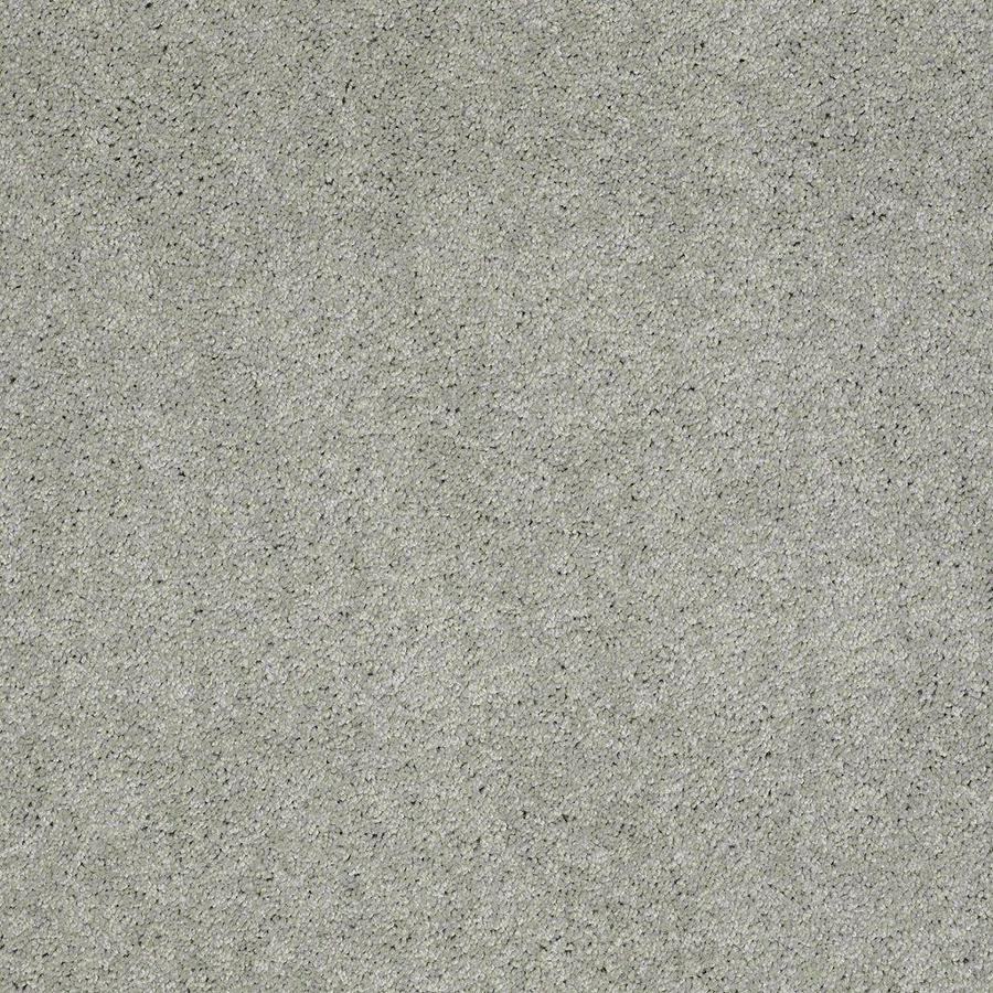 STAINMASTER Active Family Supreme Delight Mystical Textured Indoor Carpet