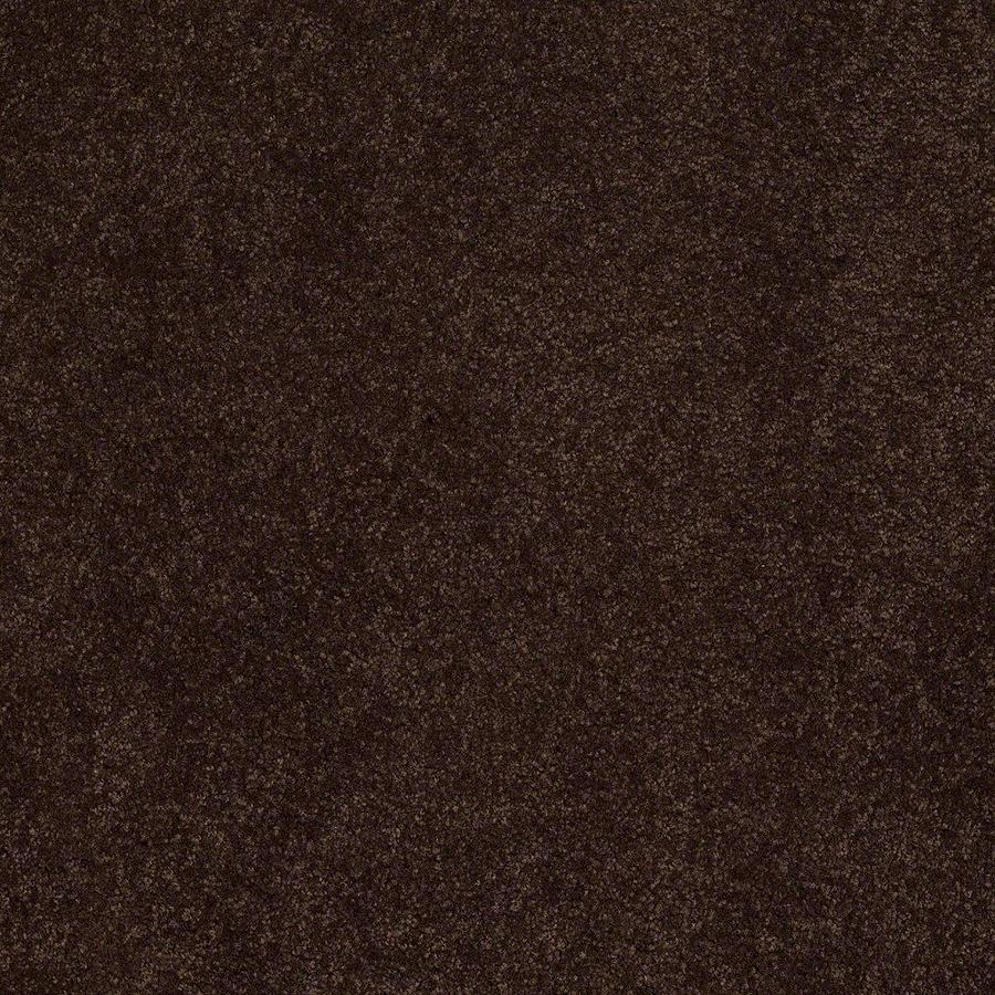 STAINMASTER Active Family Supreme Delight Chestnut Textured Indoor Carpet