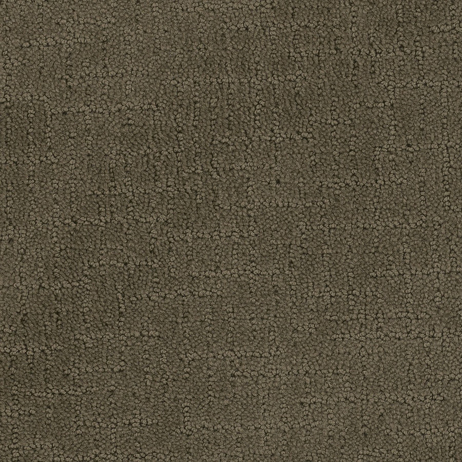 STAINMASTER Active Family Undeniable Timberline Berber Indoor Carpet