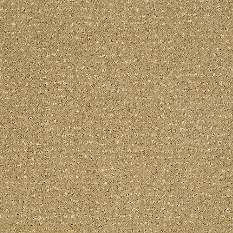 STAINMASTER Active Family Undisputed Summer Melon Berber Indoor Carpet