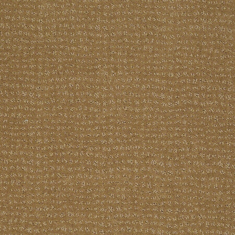 STAINMASTER Active Family Undisputed Starfish Berber Indoor Carpet
