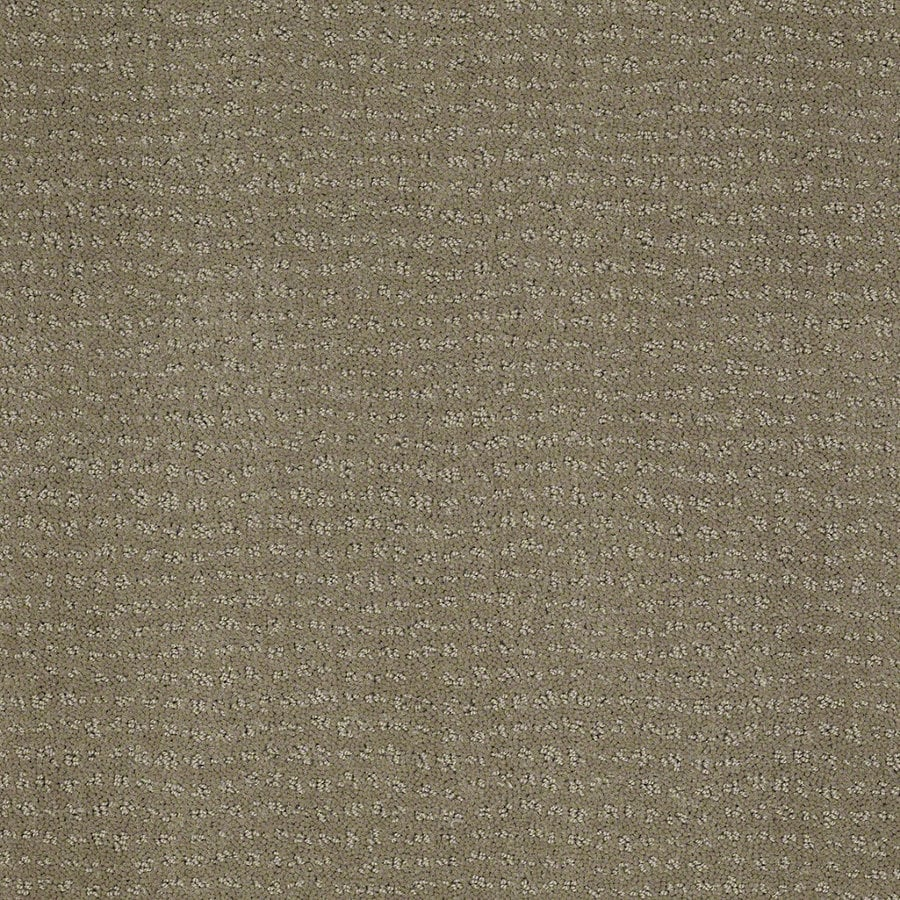 STAINMASTER Active Family Undisputed Greige Berber Indoor Carpet