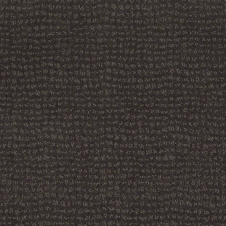 STAINMASTER Active Family Undisputed Falcon Berber Indoor Carpet