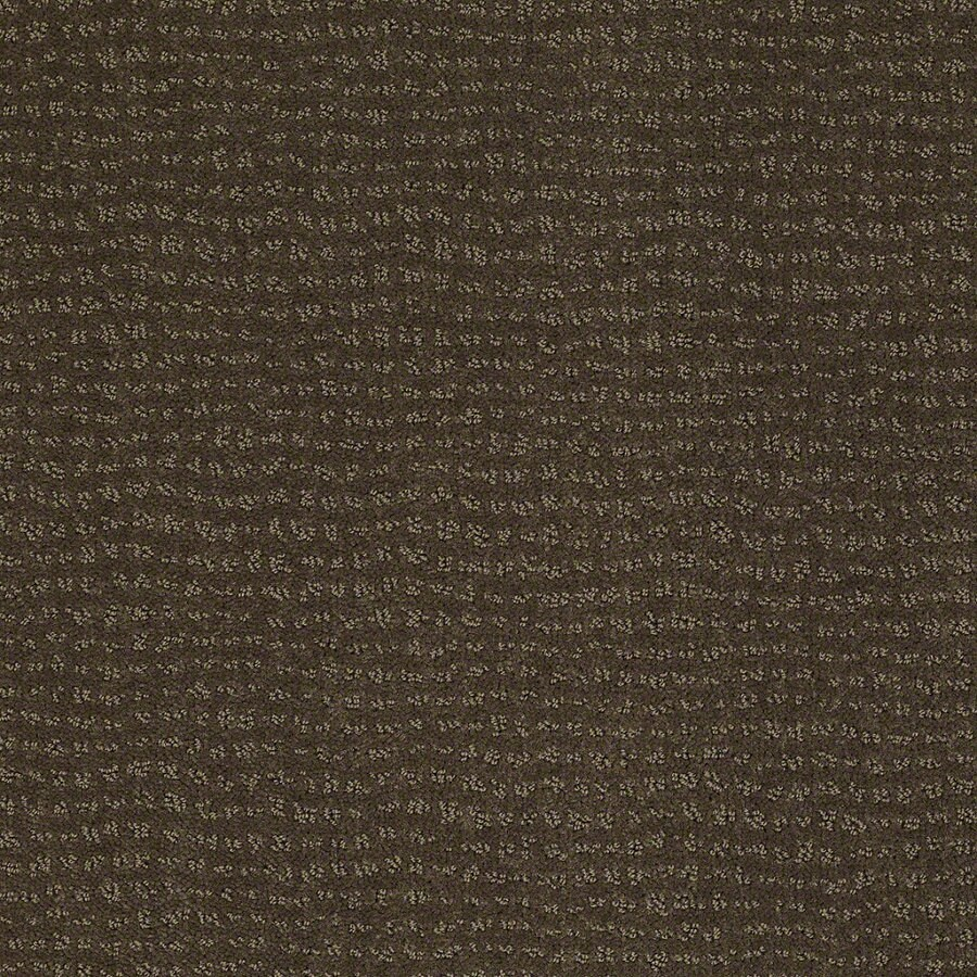 STAINMASTER Active Family Undisputed Shitake Berber Indoor Carpet