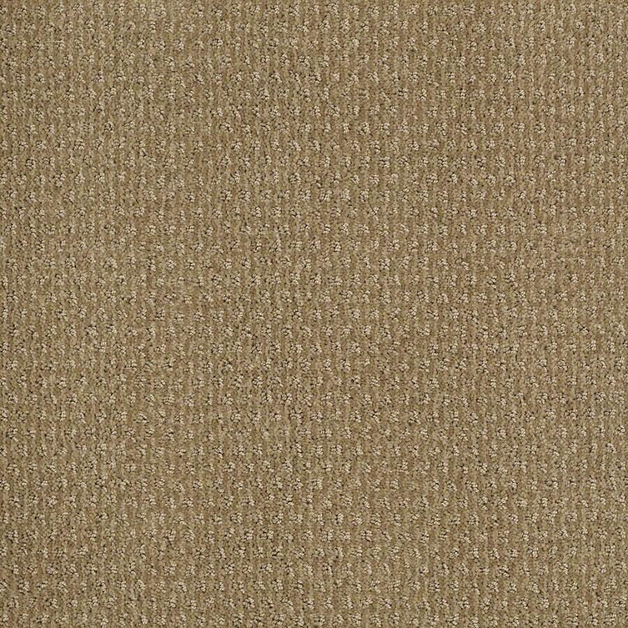 STAINMASTER Active Family St Thomas Sahara Sun Berber Indoor Carpet