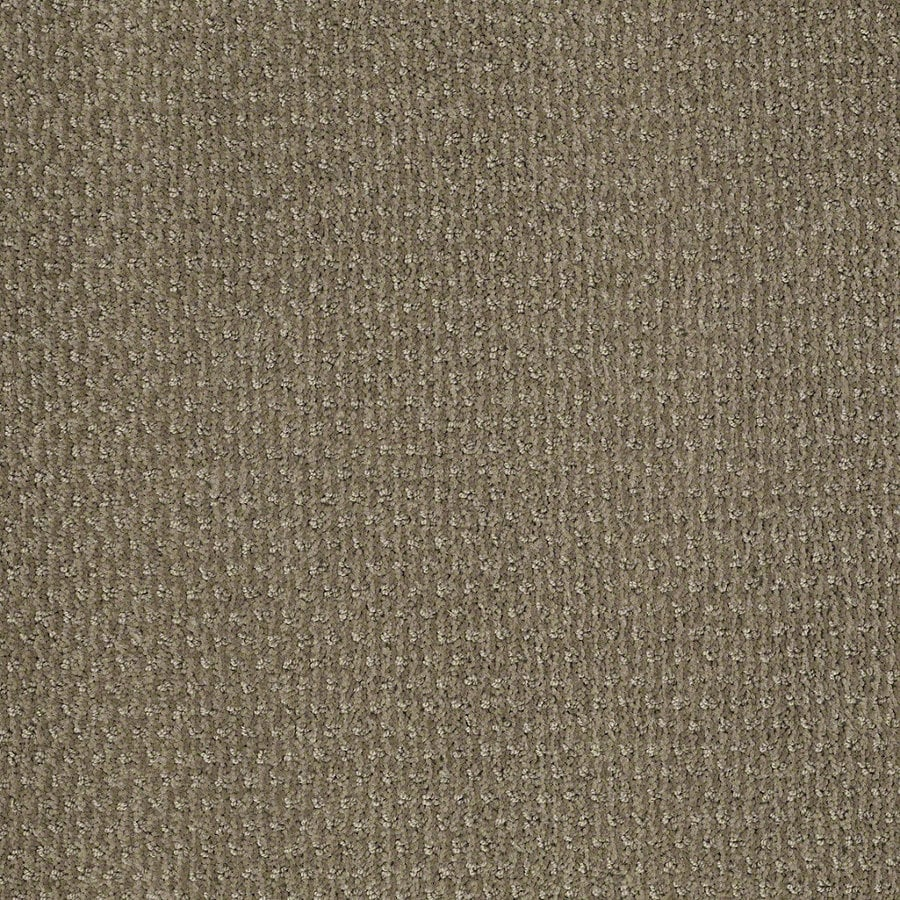 STAINMASTER Active Family St Thomas Greige Berber Indoor Carpet