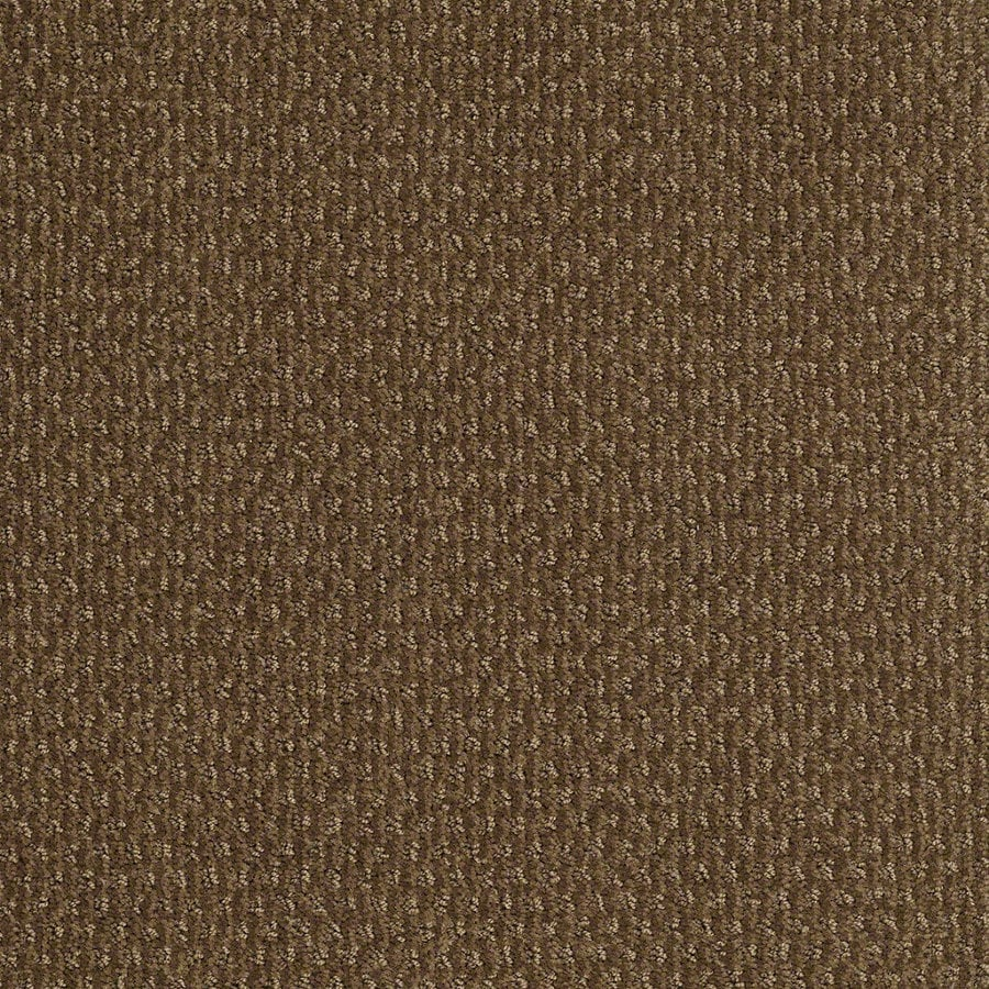 STAINMASTER Active Family St Thomas Toasted Coconut Berber Indoor Carpet