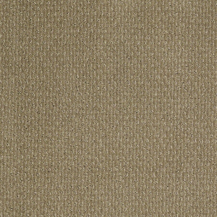 STAINMASTER Active Family St Thomas Fennel Berber Indoor Carpet