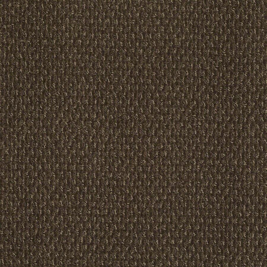 STAINMASTER Active Family St Thomas Shitake Berber Indoor Carpet