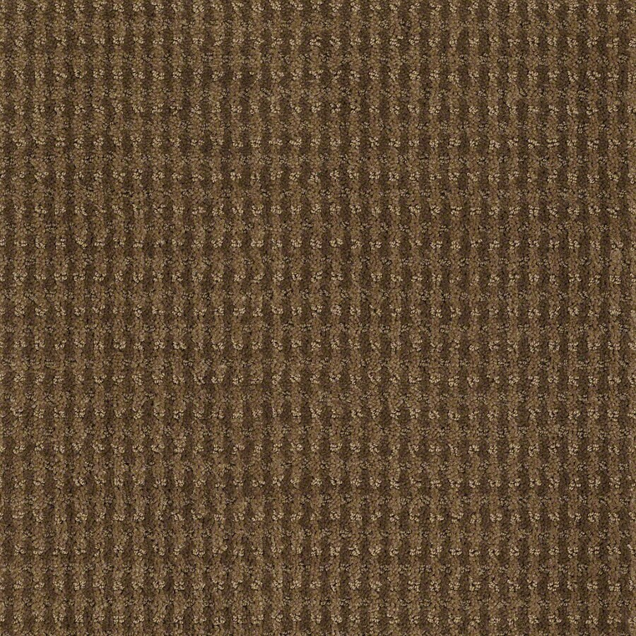 STAINMASTER Active Family St John Toasted Coconut Berber Indoor Carpet