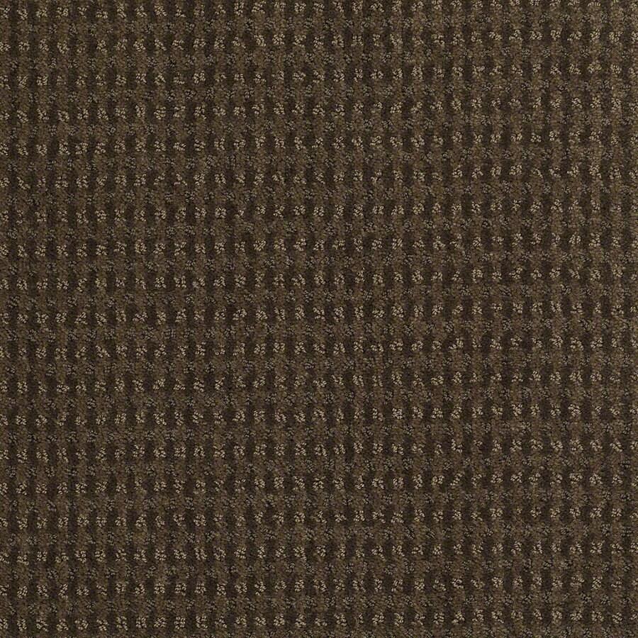 STAINMASTER Active Family St John Shitake Berber Indoor Carpet