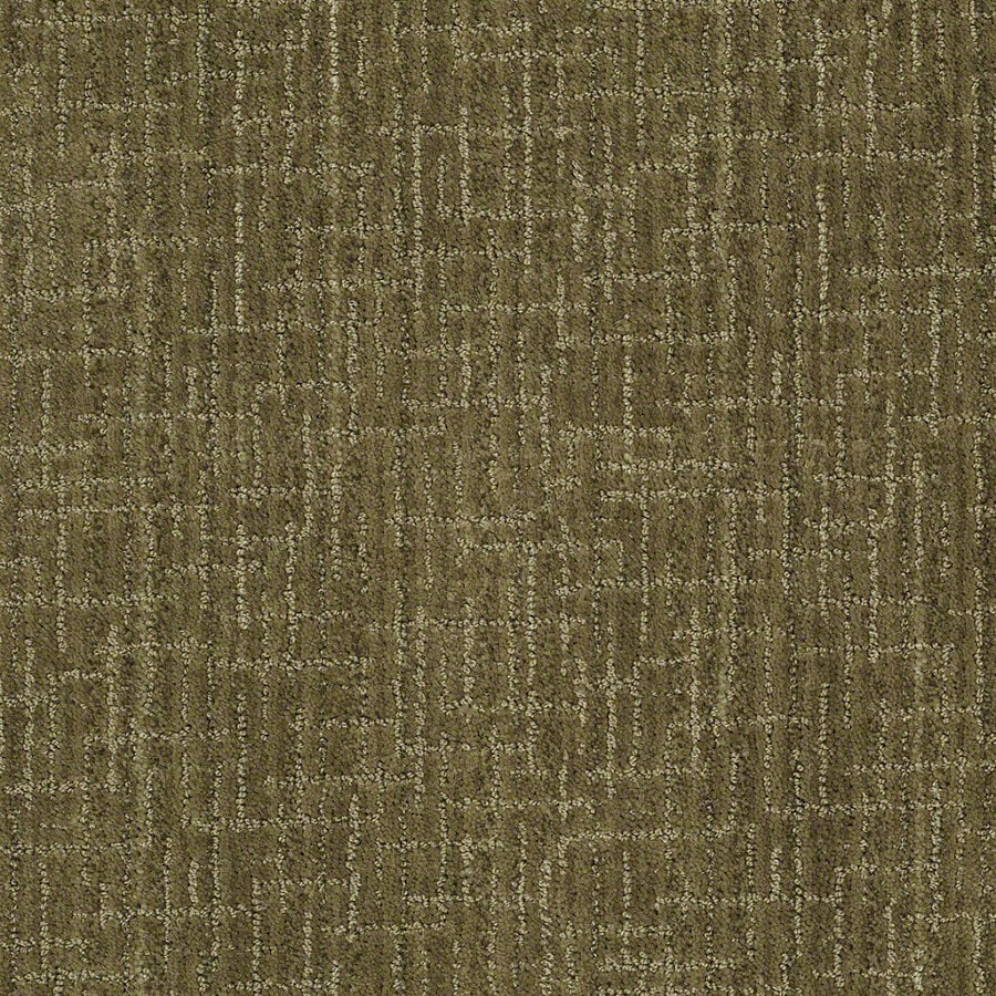 STAINMASTER Active Family Unquestionable Garden Medley Berber Indoor Carpet