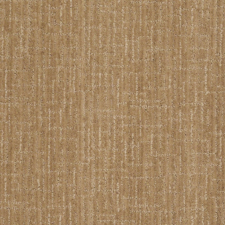 STAINMASTER Active Family Unquestionable Dover Plains Berber Indoor Carpet