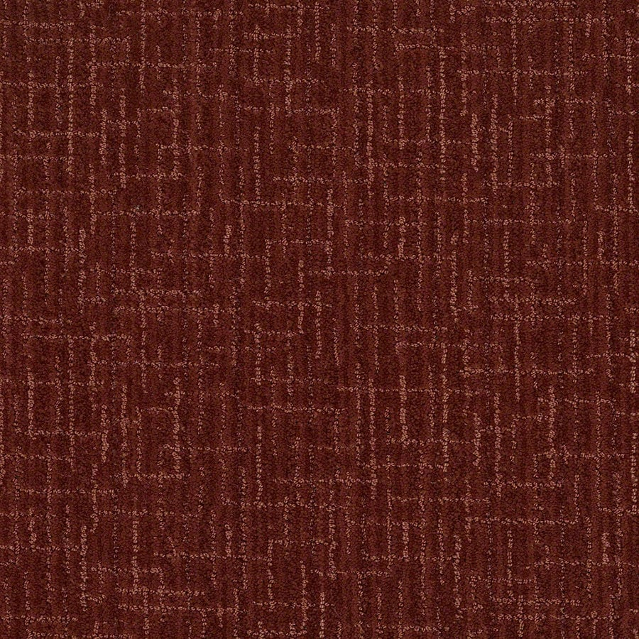 STAINMASTER Active Family Unquestionable Cinnamon Stick Berber Indoor Carpet