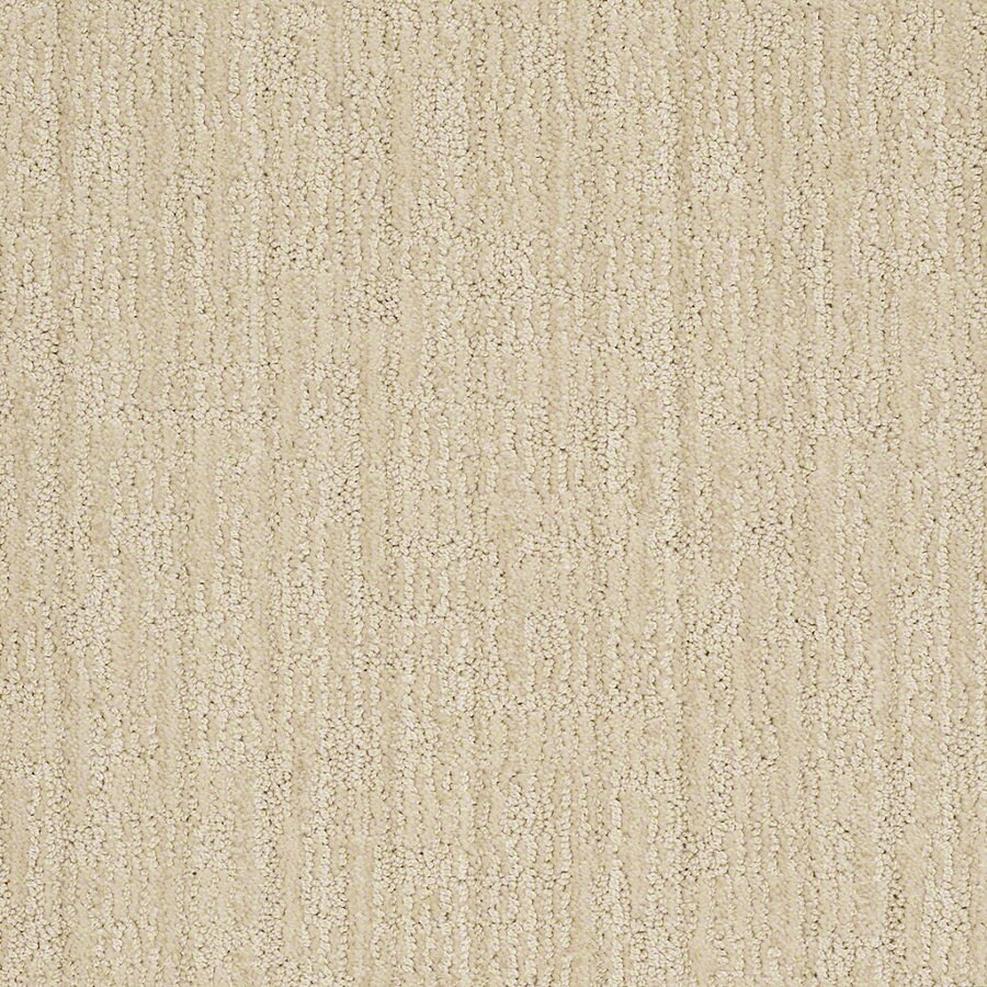 STAINMASTER Active Family Unmistakable Candleglow Berber Indoor Carpet