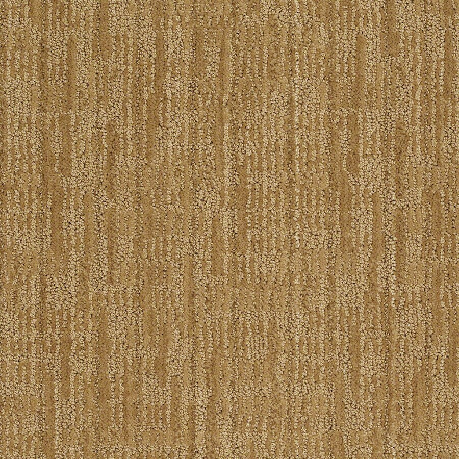 STAINMASTER Active Family Unmistakable Amber Grain Berber Indoor Carpet