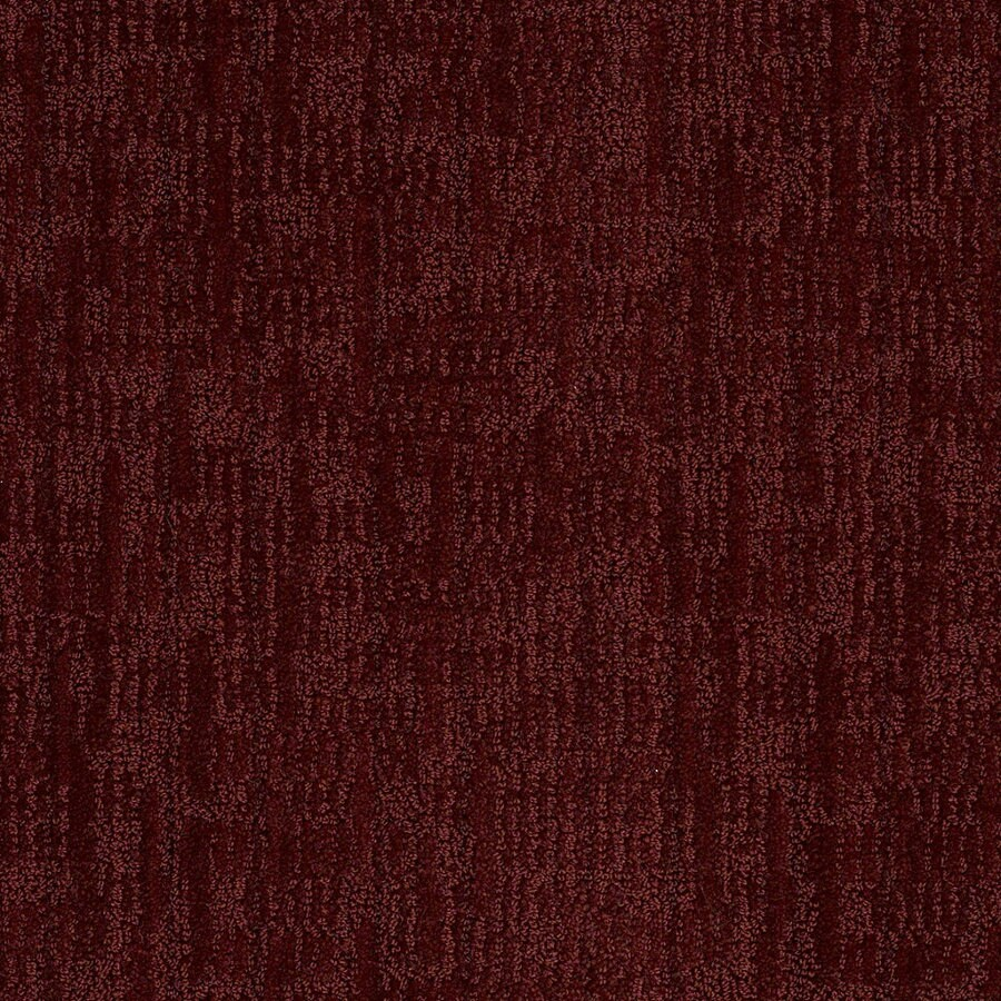 STAINMASTER Active Family Unmistakable Spiced Berry Berber Indoor Carpet