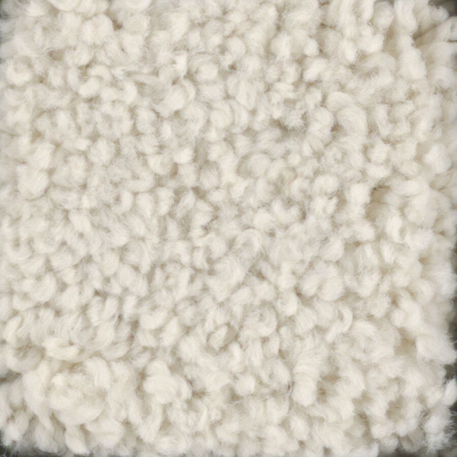 STAINMASTER TruSoft Subtle Beauty Divinity Textured Indoor Carpet