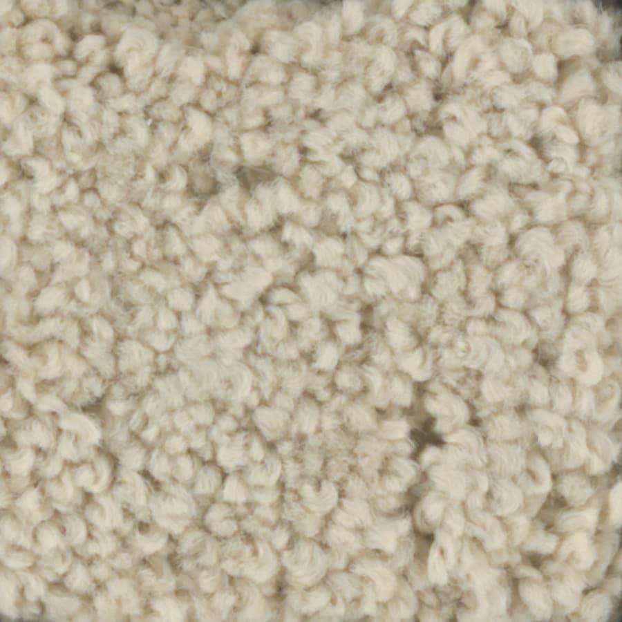 STAINMASTER TruSoft Subtle Beauty Sugar Cookie Textured Indoor Carpet