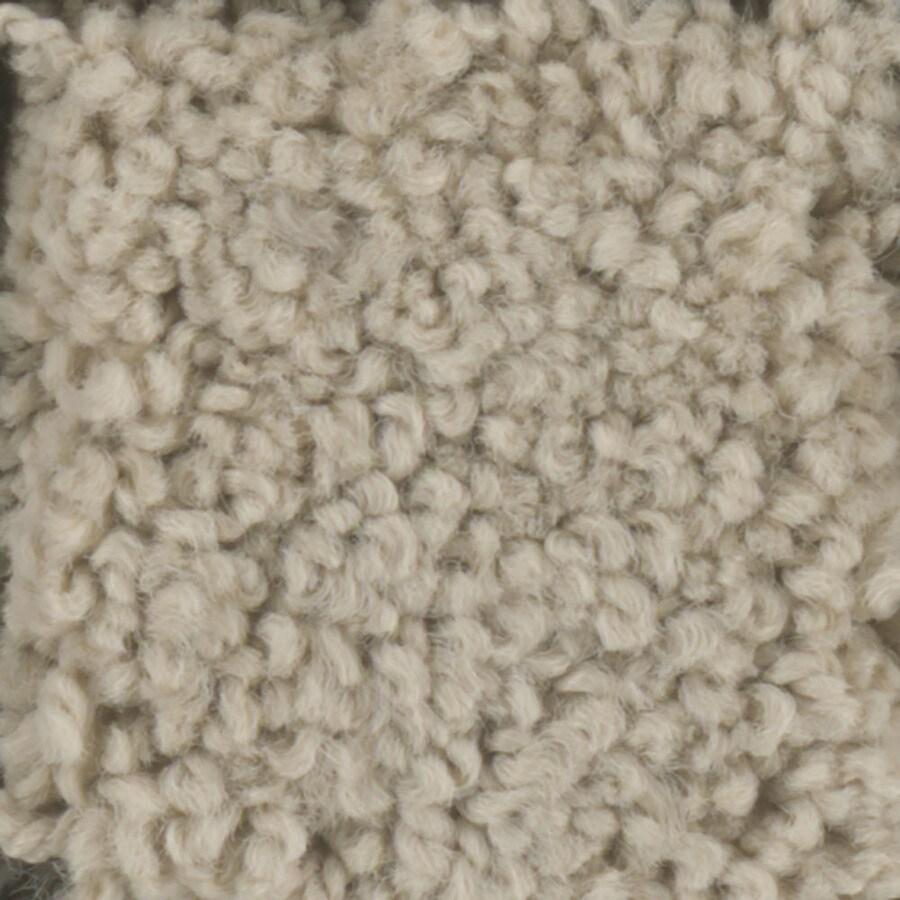 STAINMASTER TruSoft Subtle Beauty Masonry Textured Indoor Carpet
