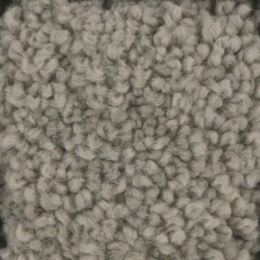 STAINMASTER TruSoft Subtle Beauty Wheat Toast Textured Indoor Carpet