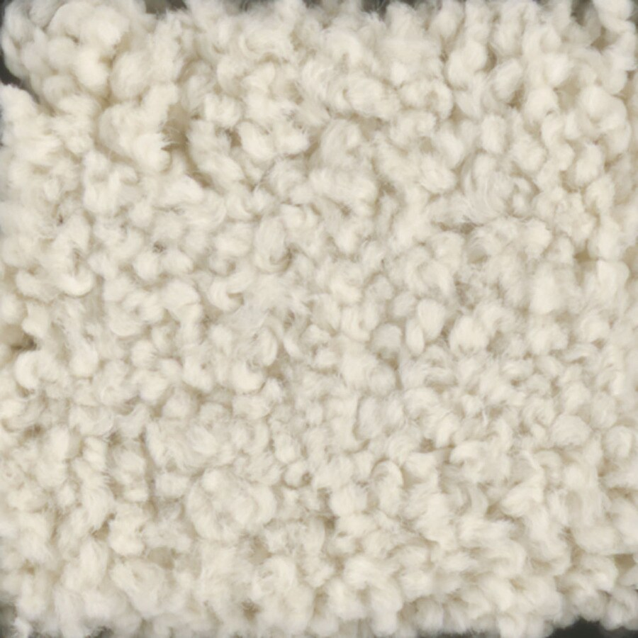 STAINMASTER TruSoft Subtle Beauty Hominy Textured Indoor Carpet