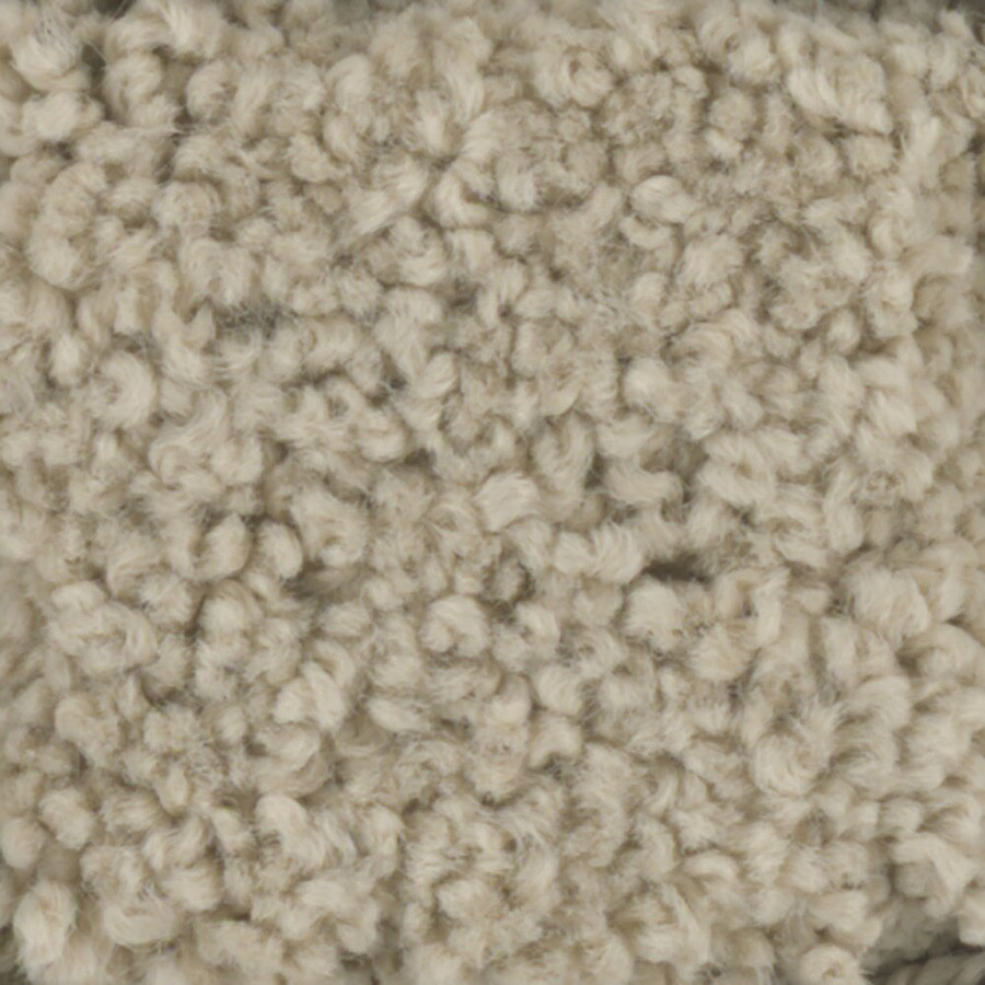 STAINMASTER TruSoft Subtle Beauty Tee Pee Textured Indoor Carpet