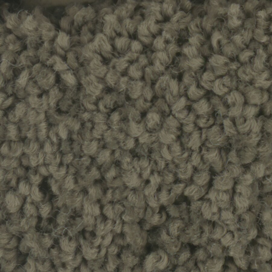 STAINMASTER TruSoft Subtle Beauty Mistle Toe Textured Indoor Carpet