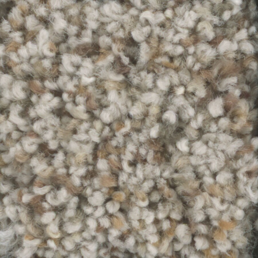 STAINMASTER TruSoft Pronounced Beauty 3 Birch Bark Textured Indoor Carpet