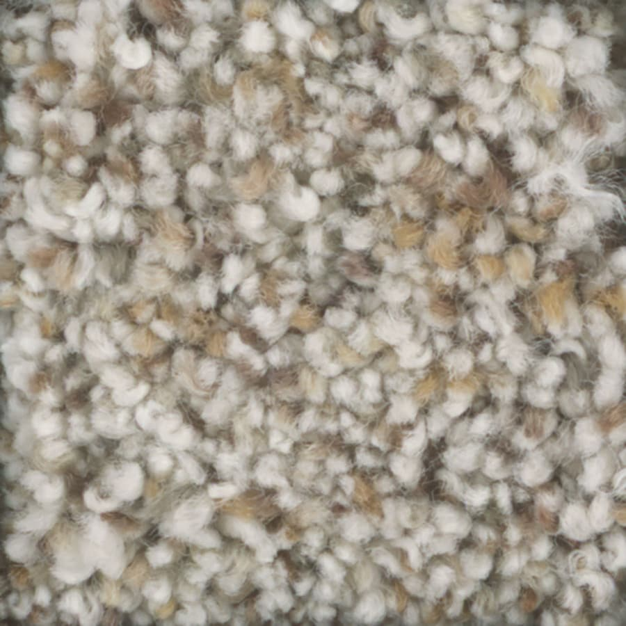 STAINMASTER TruSoft Pronounced Beauty 1 Whipped Cream Textured Indoor Carpet