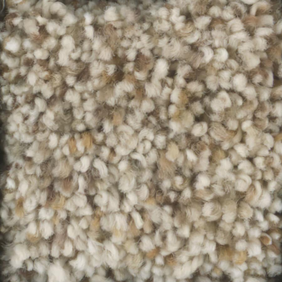 STAINMASTER TruSoft Pronounced Beauty 1 Wild Rice Textured Indoor Carpet