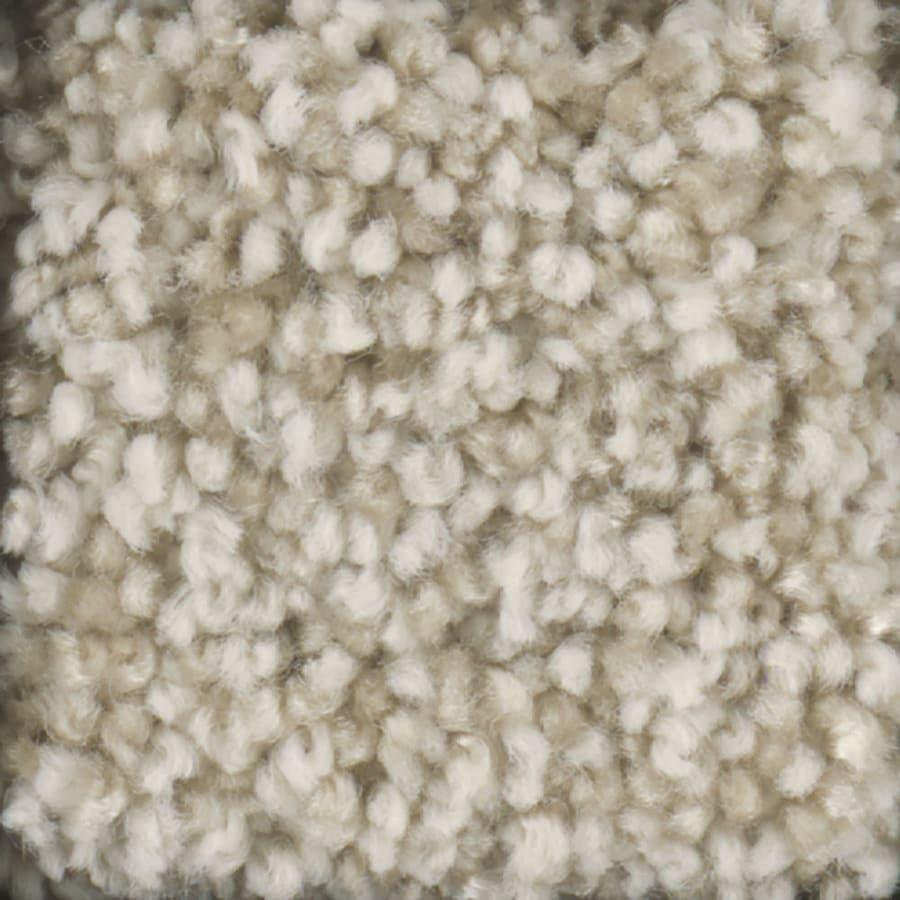 STAINMASTER TruSoft Dynamic Beauty 1 Khaki Textured Indoor Carpet