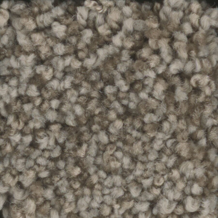 STAINMASTER TruSoft Dynamic Beauty 1 Wheat Toast Textured Indoor Carpet
