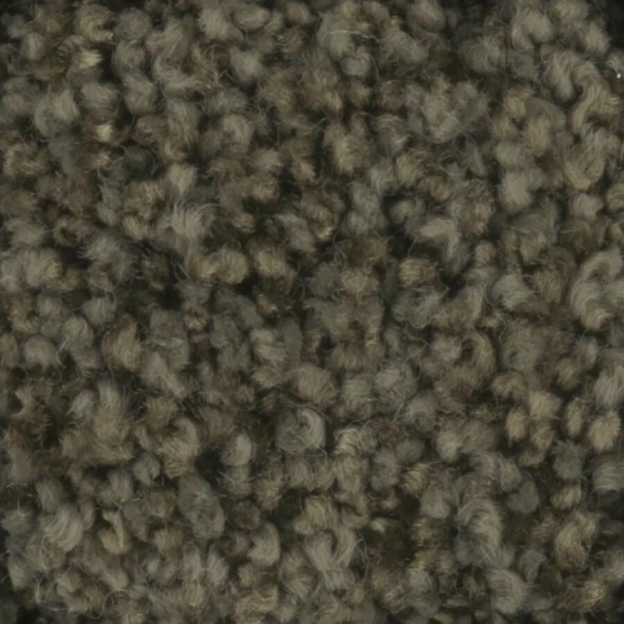 STAINMASTER TruSoft Dynamic Beauty 3 Mistletoe Textured Indoor Carpet