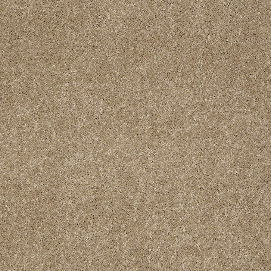 STAINMASTER Active Family Supreme Delight 2 Trail Textured Indoor Carpet
