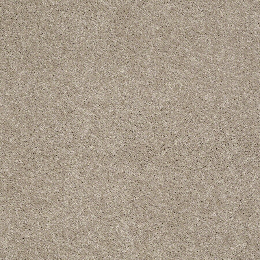 STAINMASTER Active Family Supreme Delight 3 Park Avenue Textured Indoor Carpet