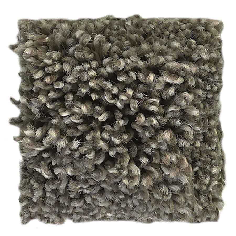 STAINMASTER PetProtect Baxter III Doodle Textured Indoor Carpet