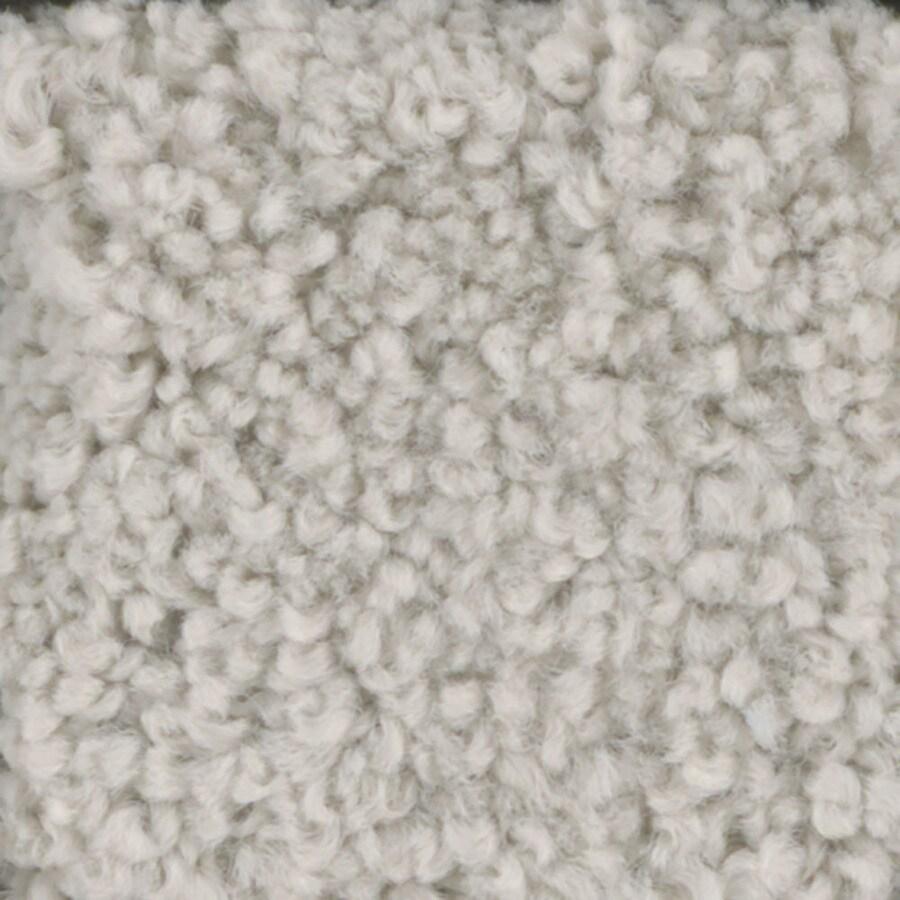 STAINMASTER TruSoft Subtle Beauty Spider Web Textured Indoor Carpet