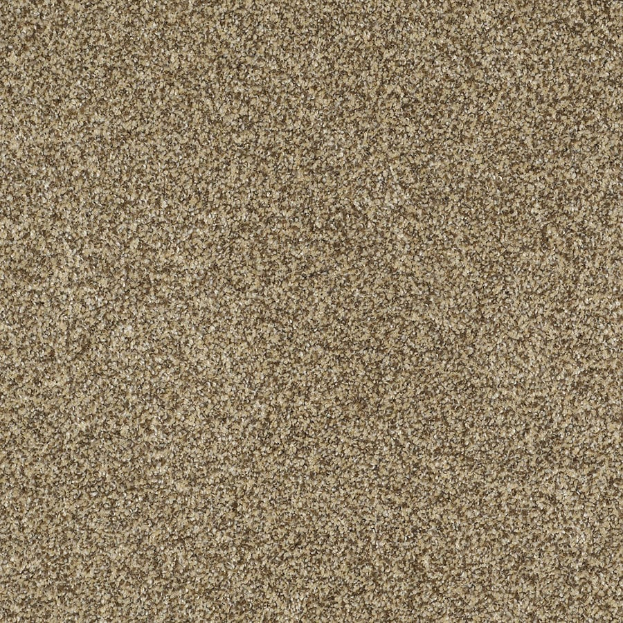 Shaw Private Oasis II Sahara Gold Rectangular Indoor Tufted Area Rug (Common: 6 x 9; Actual: 72-in W x 108-in L)